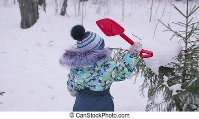 jeux, hiver, sapin, ensoleillé, neige, air., day., petit, park., jeux, enfant, amusement, frais