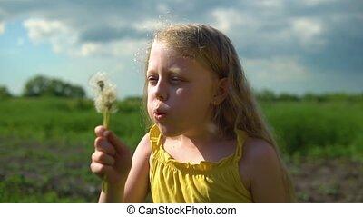 jeux, long, pissenlit, cheveux, girl, gros plan, vert, field., herbe, contre, ciel, tir, fond, bleu leger