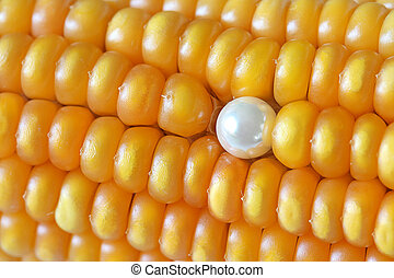 Pearl Ear Stud on Maize Corns