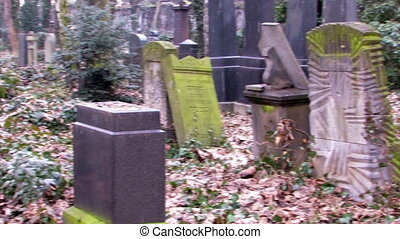 jewish old cemetery