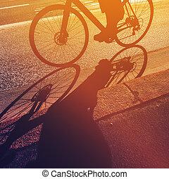 jezdit jízdní kolo