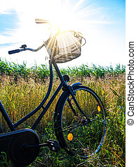jezdit na kole, do, krajina