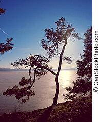 jezero, krajina, zamrzlý, západ slunce, winter., fotografie