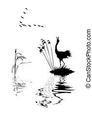 jezero, silueta, ptáci