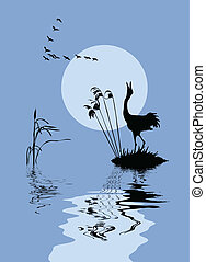 jezero, vektor, silueta, ptáci