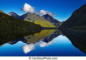 jezioro, gunn, nowy zealand