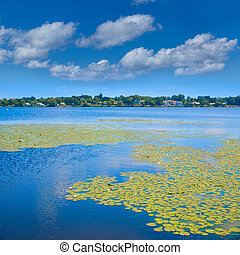 jezioro, quannapowitt, w, wakefield, blisko, boston