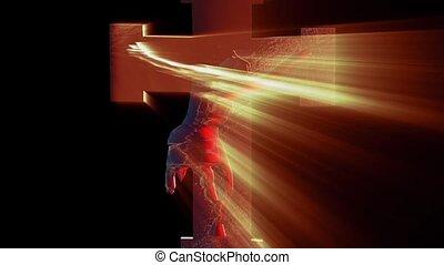 jezus, krzyż, chrystus