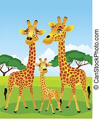 jirafa, familia