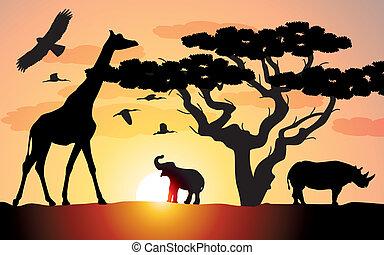 jirafa, rinoceronte, y, elefante, en, áfrica