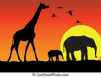 jirafa, y, elefantes, en, áfrica