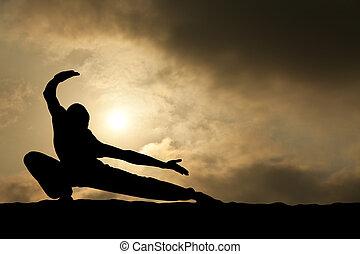 jiu jitsu, mann, silhouette, auf, dramatischer himmel