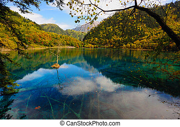 jiuzhaigou, 陶磁器レーキレッド, 風景, 森林