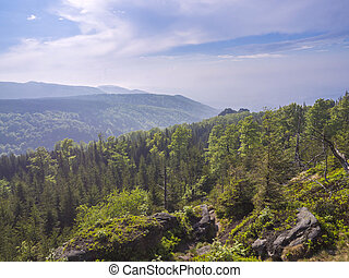 Jizera Mountains (jizerske hory) panorama, view with lush green spruce forest and blue sky, white clouds background, springtime