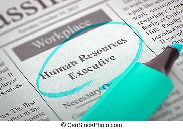 Job Opening Human Resources Executive.