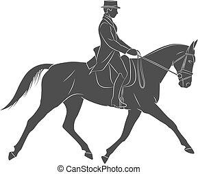 jockey, équestre, dressage, uniforme, sport., équitation, horse.