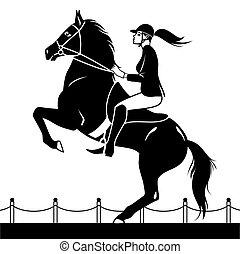 jockey, équitation, sauter, spectacles