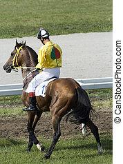 Jockey - Horse jockey