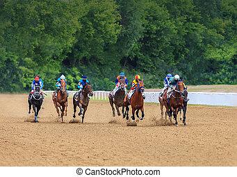 jockey horse racing horses jump to the finish line on sandy ground