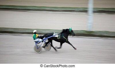 jockey, piste, conduites, haut, coureur, hippodrome, ...