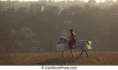 Jockey riding on thoroughbred white stallion. Slow motion -...