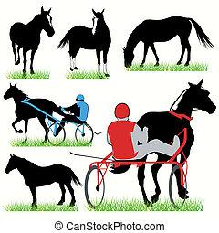 Jockeys and horses silhouettes