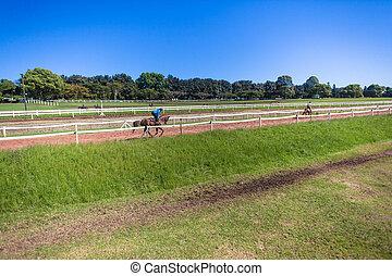Jockeys Grooms Race Horses Training