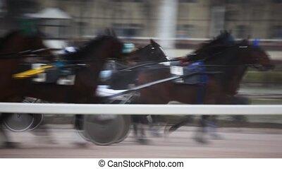 jockeys in carts harnessed of horses