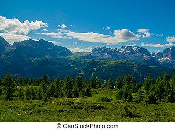jodła, góra, grzebienie, krajobraz, drzewa
