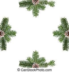 jodła, gałęzie, skład, stożki, płaski, ułożyć, przestrzeń, drzewo, sosna, boże narodzenie, górny, tło., prospekt, biały, kopia, pieśń