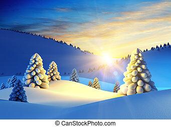 jodła, krajobraz, zima drzewa
