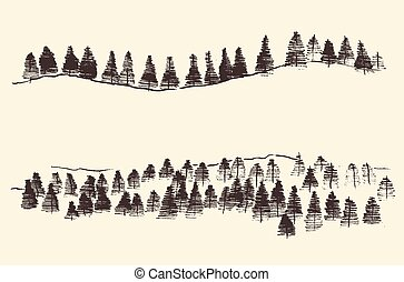 jodła, rytownictwo, las, kontury, góry