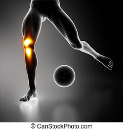 joelho, desporto, cansado, conjunto