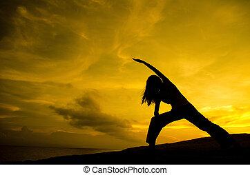 joga, in, natur