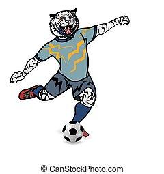 jogador, futebol, tiger, chutando, fundo, branca