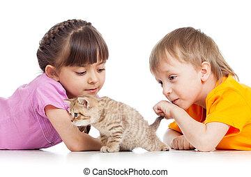 jogar crianças, com, gato, gatinho