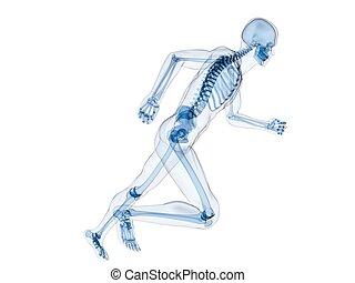 jogger - 3d rendered illustration of a running human...