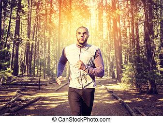 jogger, workout, mann, wald, morgen