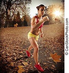jogging, en, otoño