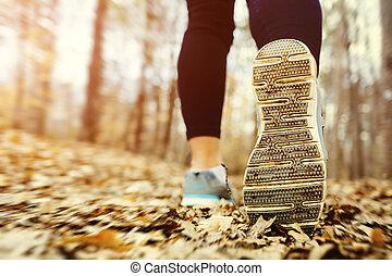 jogging, kobieta, zachód słońca, las