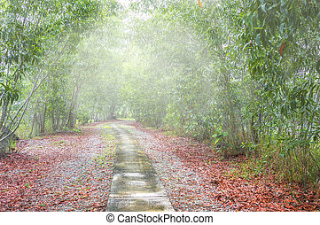 Jogging track with silent and peace enviroment