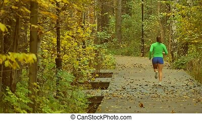 Jogging woman in park, slowmotion - The slowmotion movie of...