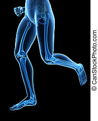 Jogging woman - visible leg bones