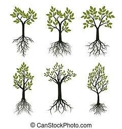 jogo, árvores verdes, com, leaves., vetorial, illustration.
