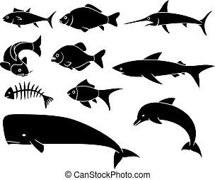 jogo, ícones, peixe-espada, peixe, -, silhuetas, carpa, pretas, baleia, (dolphin, piranha), tubarão