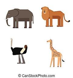 jogo, animais, jardim zoológico