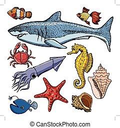 jogo, animais, lula, mar, carangueijo, tubarão