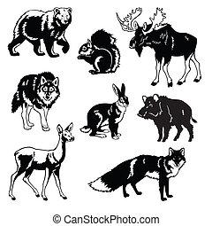 jogo, animais, selvagem