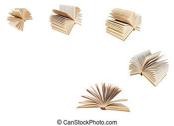 jogo, antigas, livro, ventilado