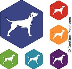 jogo, cão, ícones